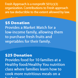 Fundraising Tri-Fold Produced for Fresh Approach