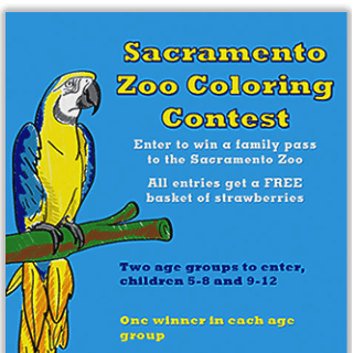 Vacaville Zoo Coloring